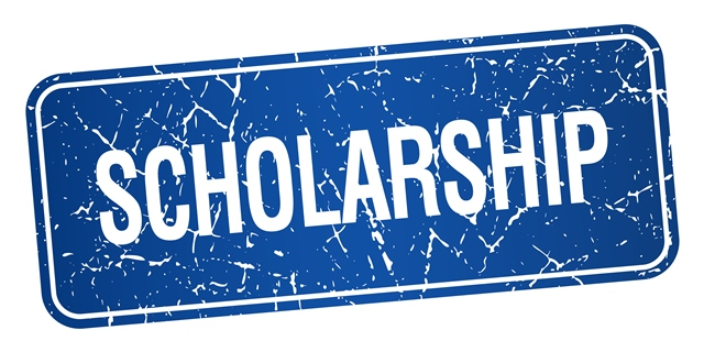 Scholarships for International Students at Ulm University - Study in  Germany for Free
