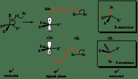 Free Radical Halogenation Module: Part 3