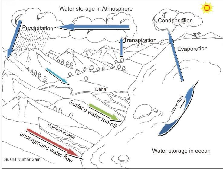Water cycle for coloring
