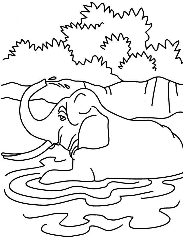 Bathing Coloring Pages