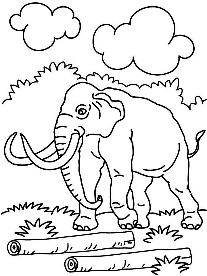 Elephant Looking To Carry Log Coloring