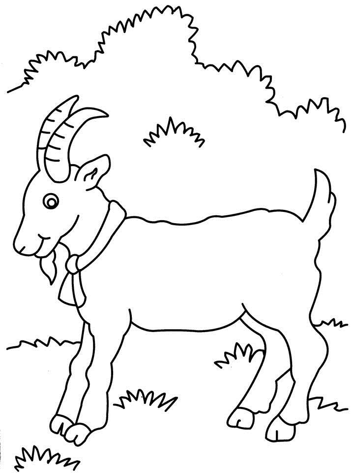 Printable Goat Coloring Page Sketch Coloring Page