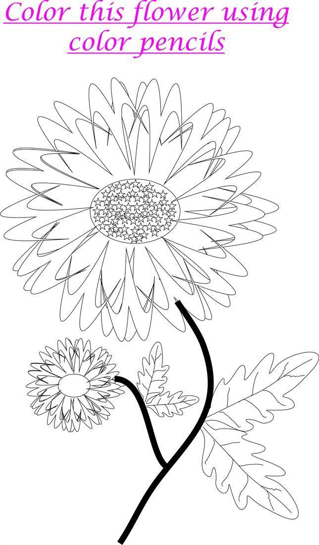 Marigold Coloring Printable Worksheet For Kids