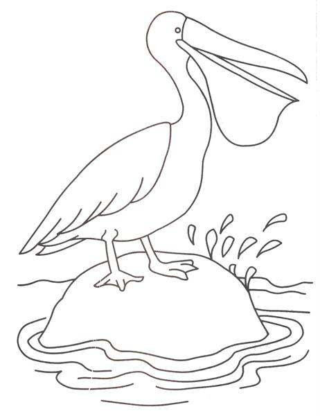 Duck coloring printable page for kids 2