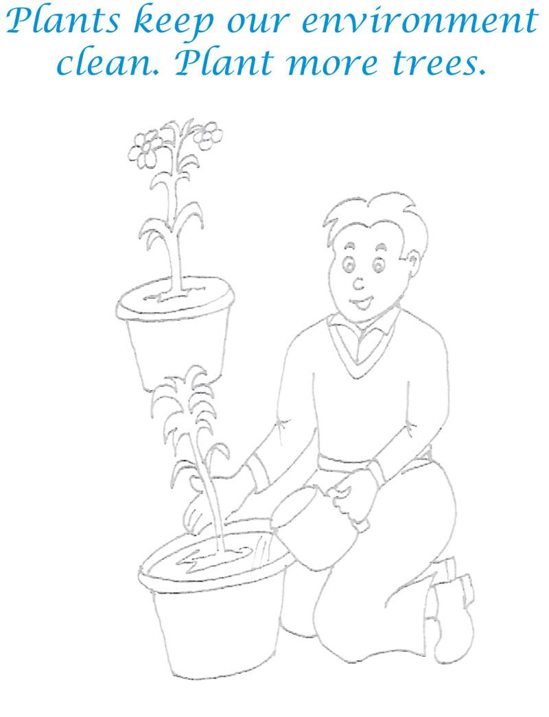Plant Trees Coloring Page