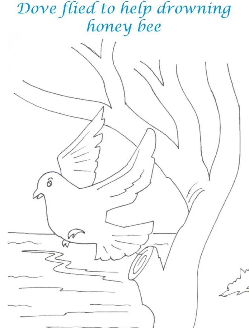 Bee and Dove story coloring page for kids 8
