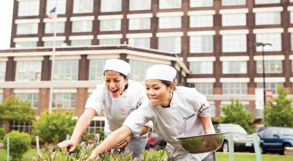 Kendall College 肯德爾餐旅管理大學