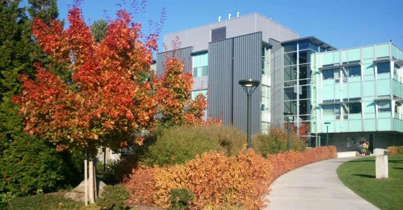Bellevue College 貝爾維社區學院