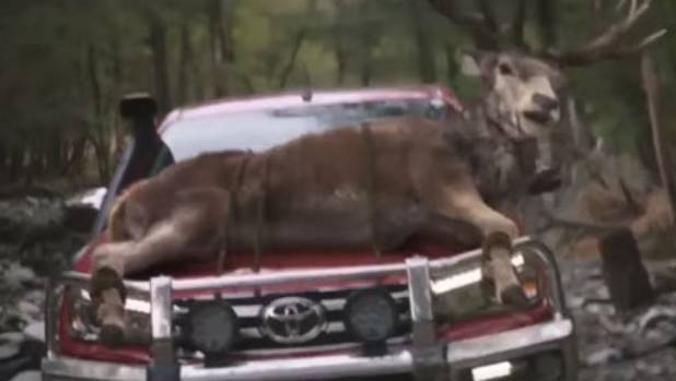 Toyota was at pains to point out all the animals were CGI.