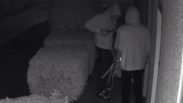 Police are appealing to the public to help identify these two vandals who broke into MP Gerry Brownlee's office early Monday morning.