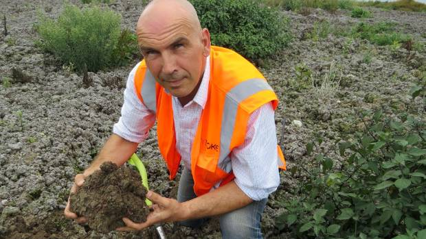 Dr Michael Quintern harvests 1.2 billion worms at his sites in the South Waikato.