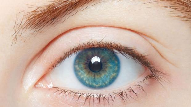 Iris scans are one of the more accurate forms of biometrics including fingerprint scanning.