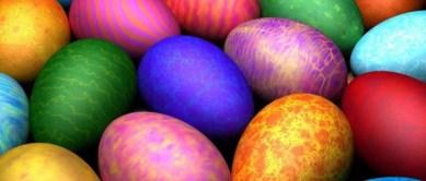 eggs4750x320