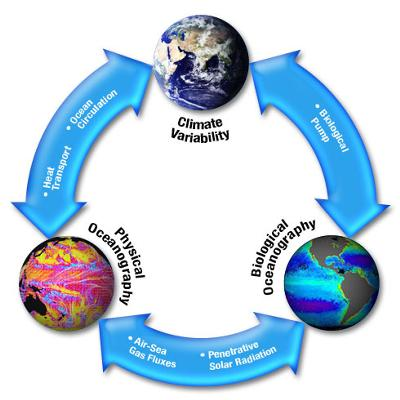 Detailed Scientific Nitrogen Cycle Diagram Who Says Global Warming Is Bad To Start With