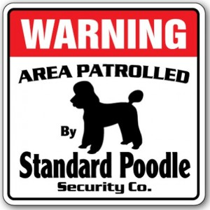 Warning Standard Poodle Sign