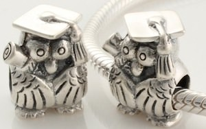 owl graduation Pandora bracelet charm