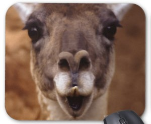 Smiling Llama Mousepad
