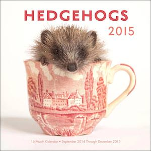 Hedgehogs 2015 Wall Calendar