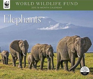 WWF Elephants 2015 Wall Calendar