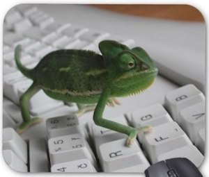 Chameleon On A Keyboard Mousepad