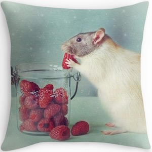 Raspberry Eating Rat Pillow