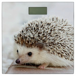 Hedgehog Digital Bathroom Scale