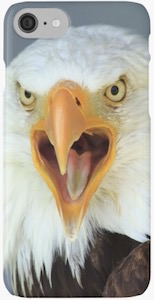 Bald Eagle iPhone 7 Case