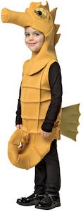 Kids Seahorse Halloween Costume