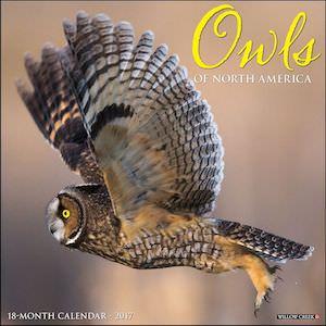 Owls Of North America Wall Calendar 2017