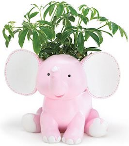 Cute Elephant Planter In Light Blue Or Pink