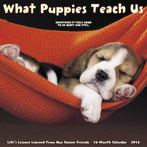 2018 What Puppies Teach Us Wall Calendar