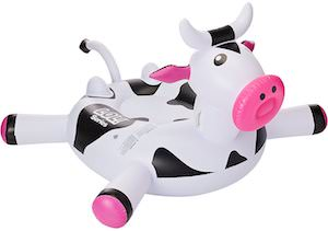 Cow Pool Float