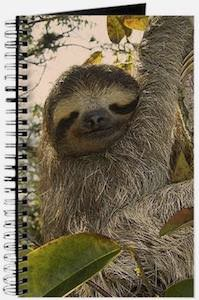 Sloth In Tree Notebook