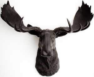 Big Moose Head