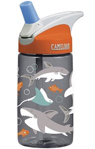 Camelbak Shark Water Bottle