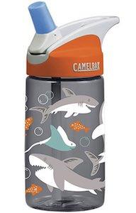 Camelbak Shark Water Bottle