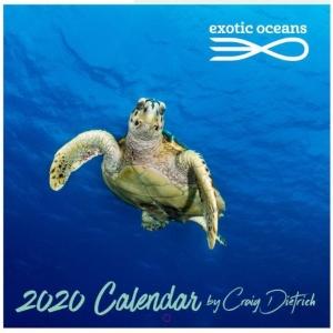 2020 Exotic Oceans Wall Calendar