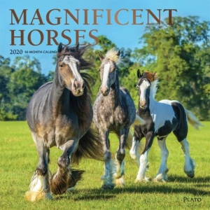 2020 Magnificent Horses Wall Calendar