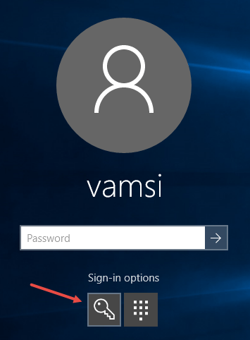 windows-10-pin-security-select-key-icon