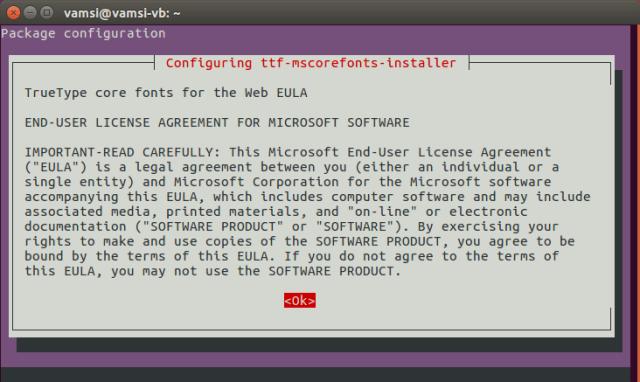install-microsoft-fonts-ubuntu-read-terms