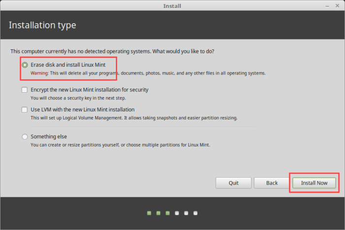 Install Linux Mint in VirtualBox - Select Erase Hard Disk Option