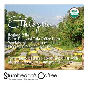 organic coffee ethiopia