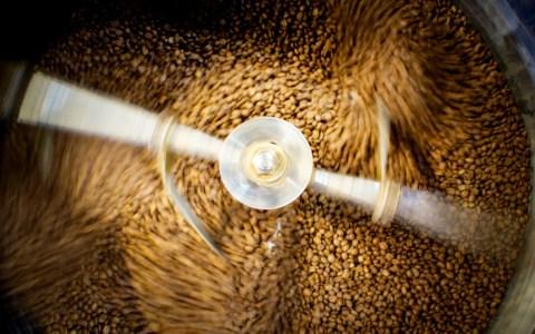 beans aerial