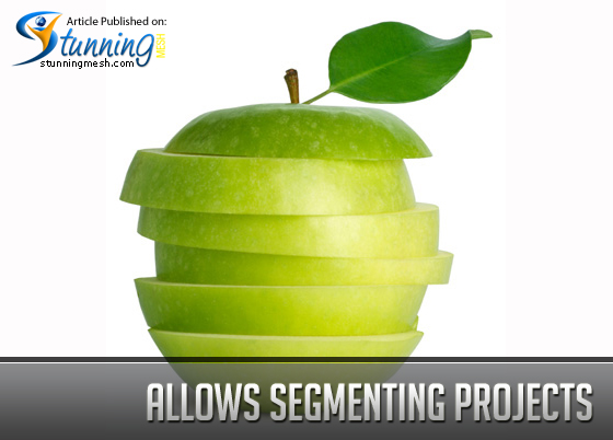 Allows Segmenting Projects