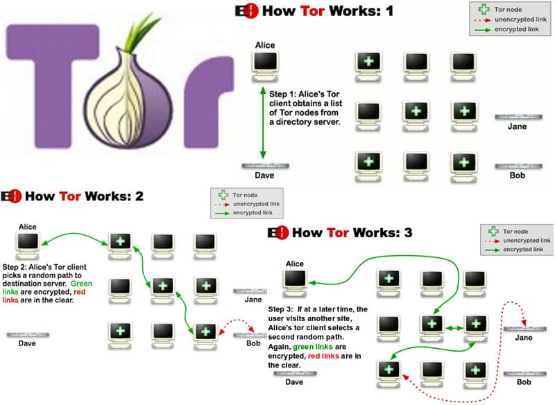 How-Tor-network-works
