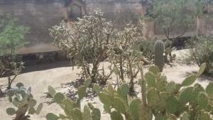 Mission San Xavier del Bac - Tucson, AZ