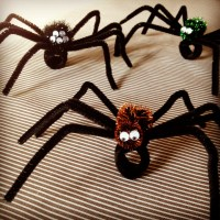 Pipe Cleaner Spider Craft | www.imgkid.com - The Image Kid ...