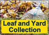 leaf_and_yard