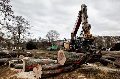Ein Bagger transportiert gefällte Bäume im Stuttgarter Schlossgarten. Klicken Sie sich durch die Bilder von der Baumfäll-Aktion.  Foto: