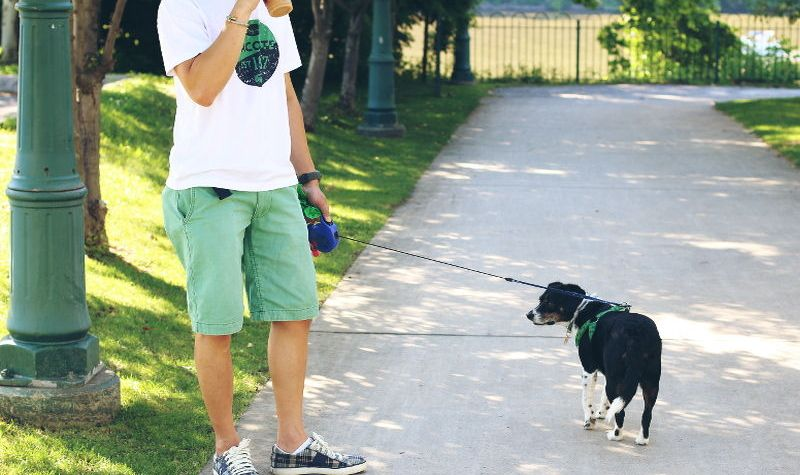 Casual men's fashion, style, colored shorts, bottoms, sneakers, t-shirt